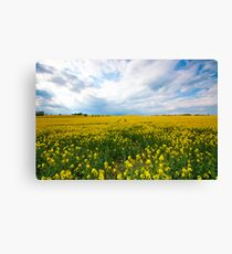 Wishing For Summertime  Canvas Print