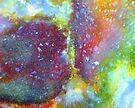 A Kiss In Colour by Stephanie Bateman-Graham