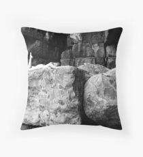 Seacombe No.4 Throw Pillow