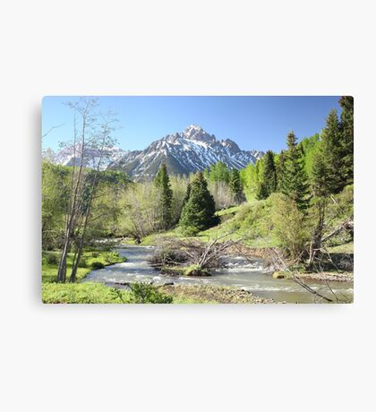 Sneffels in Springtime Canvas Print