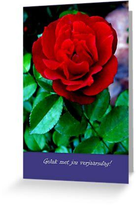 Verjaarsdagkaartjie/ Birthday card....or something else! by Elizabeth Kendall