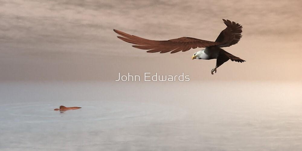 The Hunt by John Edwards