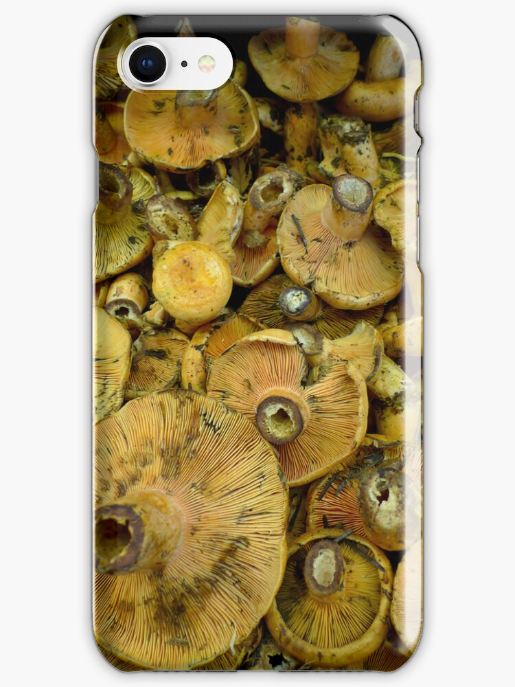 Mushrooms for your iPhone by Martyn Franklin