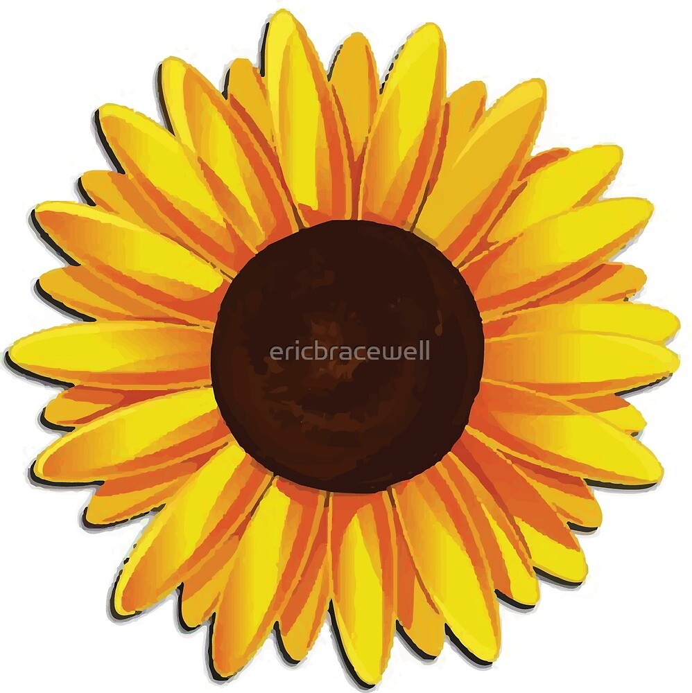 Sunflower by ericbracewell