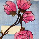 Banked Magnolias by Alexandra Felgate