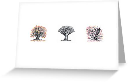 Trio of trees by Andy Smith