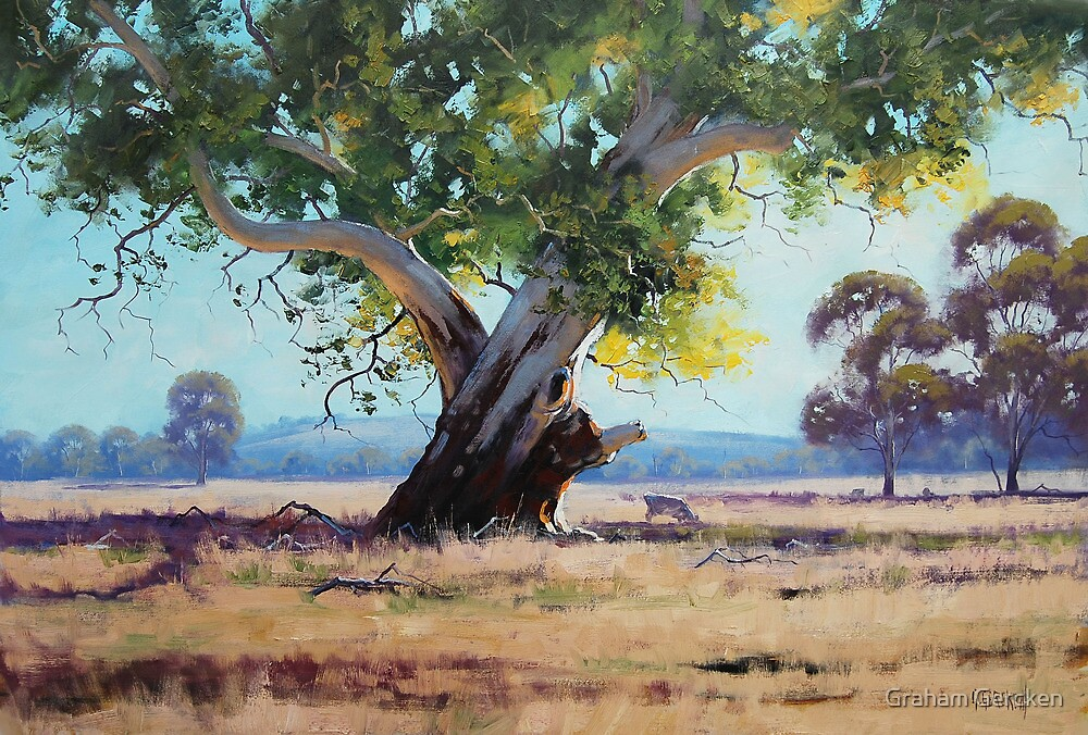 """Australian Gum Tree"" by Graham Gercken"