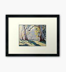 Morning Light Gums Framed Print