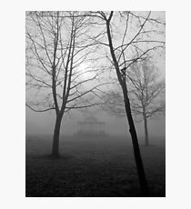 Foggy Morning in the Park Photographic Print