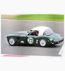 Austin Healey No 73 Poster