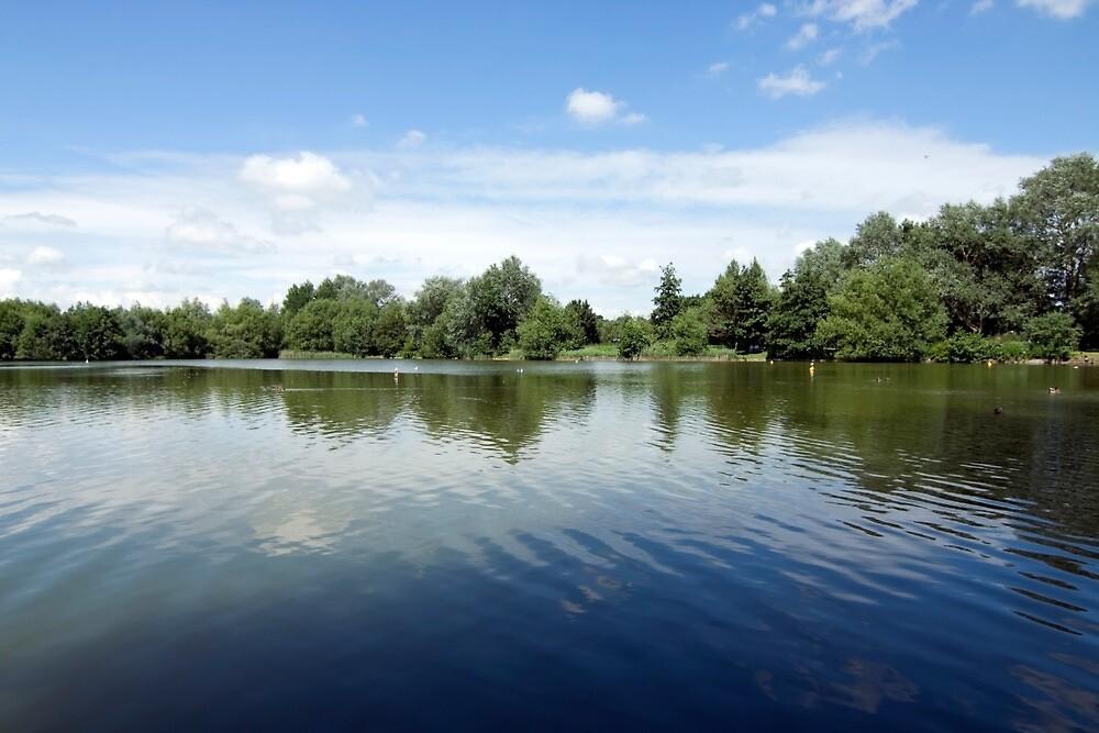Needham Lake. by Cyrusdvirus
