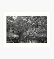 Slough. Three Lakes W.M.A. Art Print