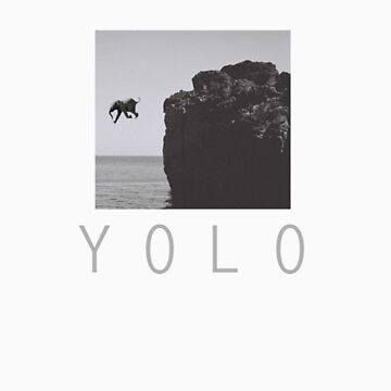 YOLO by tappers24