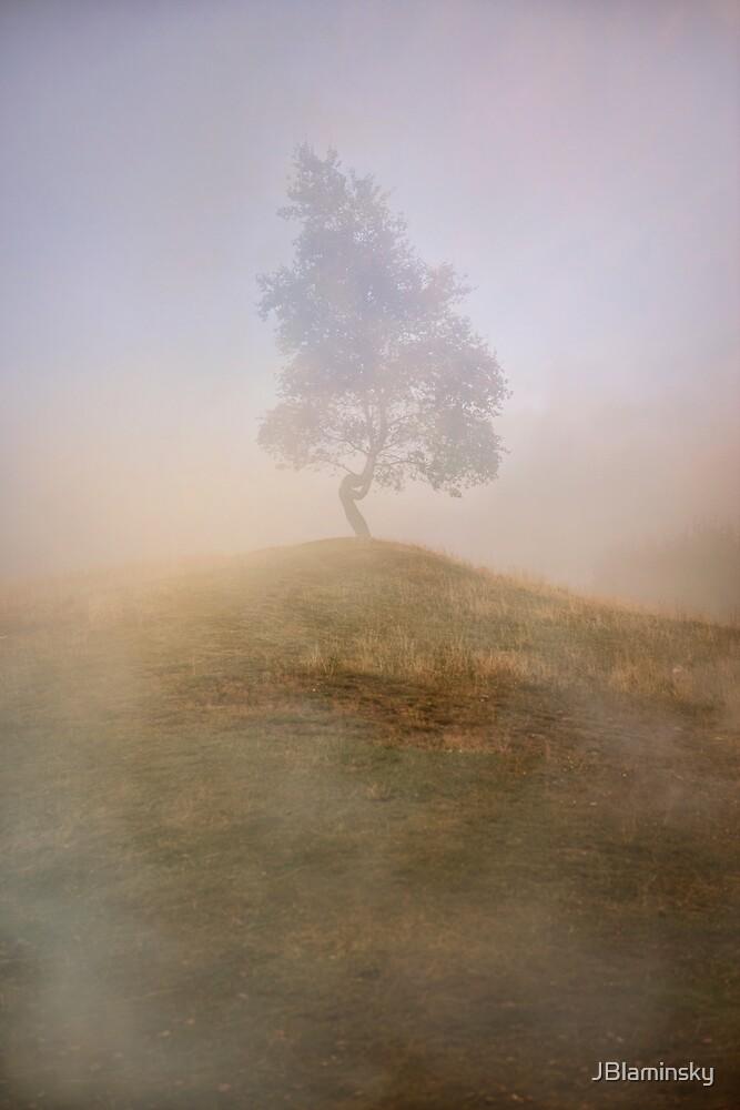 Loneliness At Foggy Dawn by JBlaminsky