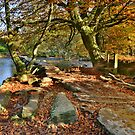 Exmoor: Autumn at Tarr Steps by Robert parsons