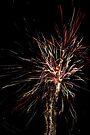 Fireworks by Briana McNair