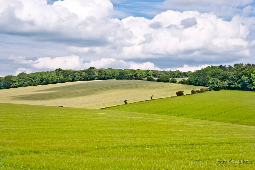 Green and Pleasant Land by Sue Knowles