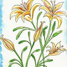 Lily Flowers by Deb Coats