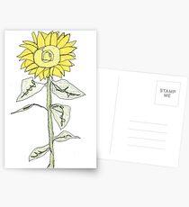 sunflower  Postcards