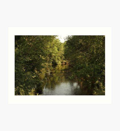 The Bark River Art Print