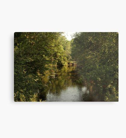The Bark River Metal Print