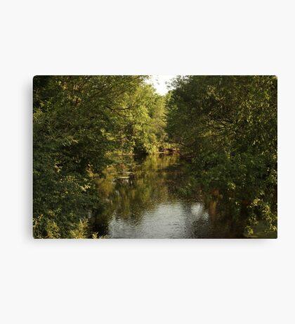 The Bark River Canvas Print