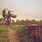 A Farmer's Bike by Valerie Rosen
