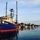 Unicorn Menemsha Harbor by Larry Glick
