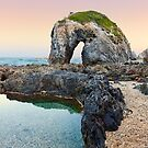 Horse Head Rock, Bermagui, New South Wales, Australia by Michael Boniwell