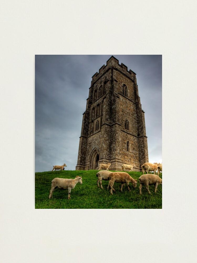 Alternate view of Sheep grazing on Glastonbury Tor Photographic Print