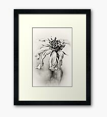 Bad dream... (b/w) Framed Print
