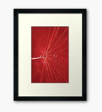 Abstrakt Rot Framed Print