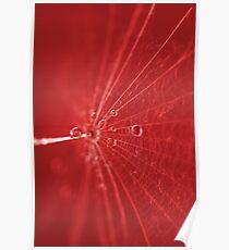 Abstrakt Rot Poster