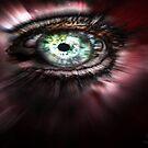 Eye from Above by Yvon van der Wijk