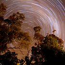 Flinders Ranges Star Trail #2 by Michael Selge