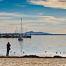 Bay View, Geelong by Mick Kupresanin