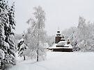 Marge Church by Anton Gorlin