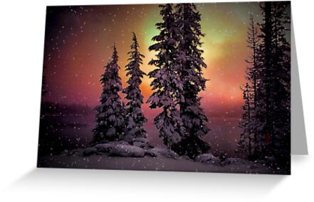 Then Came The Snow by Charles & Patricia   Harkins ~ Picture Oregon