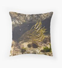 Purbeck Rockpool Throw Pillow