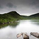 Loch Skeen, Near Moffat Water, Dumfries and Galloway, Scotland by Iain MacLean