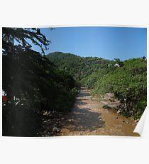 River Cuale - Rio Poster