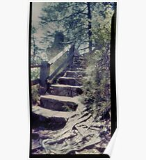 Cloudland Canyon Steps in Pinhole Poster