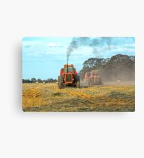 Bale em up boys..... Canvas Print