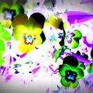 Violets by Pauli Hyvönen