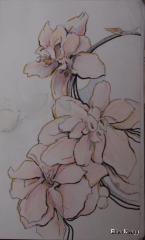 floral sketch by Ellen Keagy