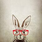 quirky bunny by theArtoflOve