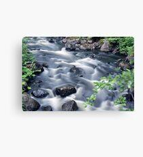 Flowing river 2 Canvas Print