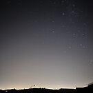 Stars by Richard Owen