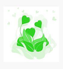 ecology emblem Photographic Print