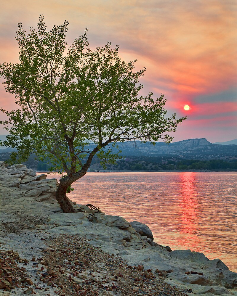 Sunset Thru Wildfire Smoke by Kim Barton